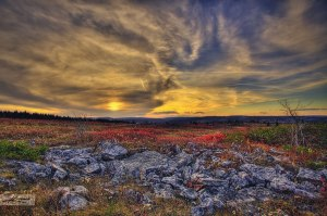 dolly-sods-wilderness-west-virginia-hdr-photography-sunset